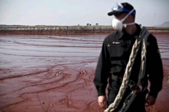 Вредные и токсичные вещества в водных экосистемах